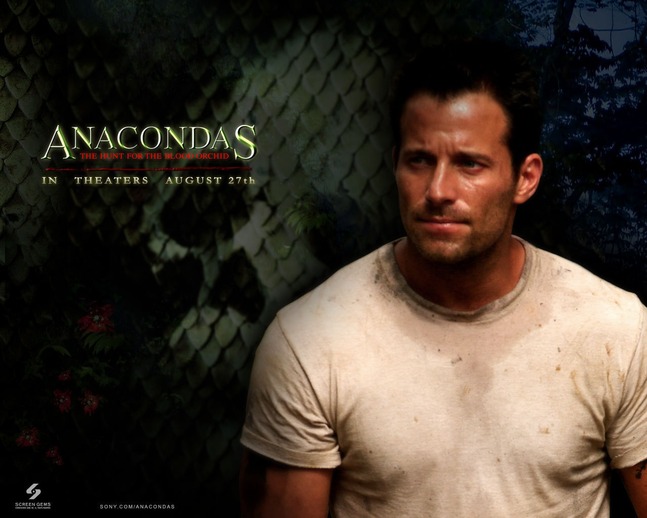 anaconda film hd