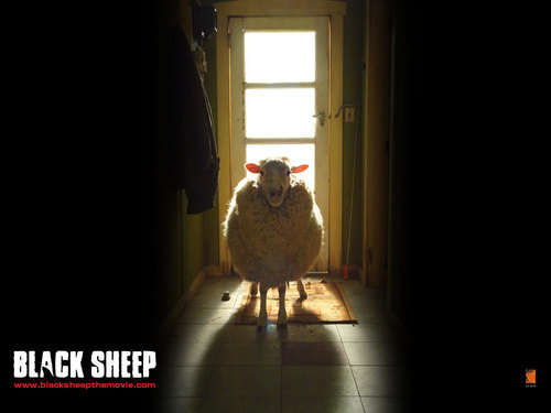 Horror Movies wallpaper with a living room entitled Black Sheep