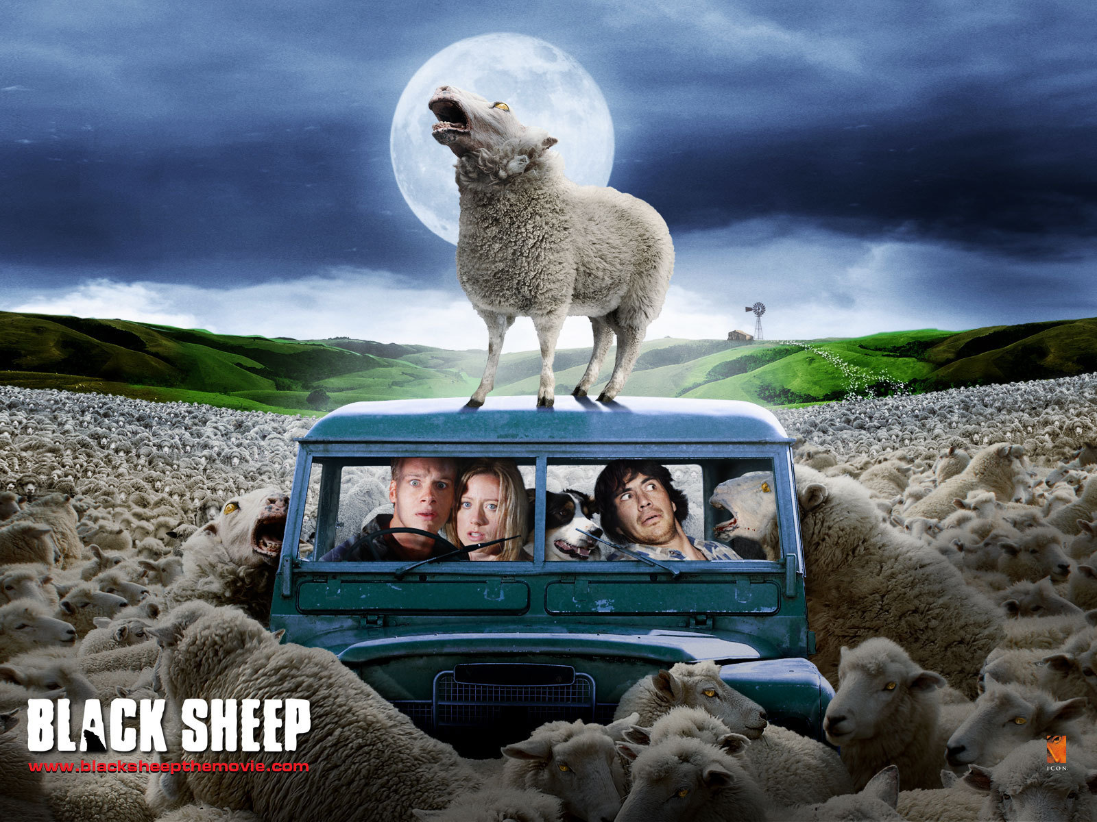 Horror Movies Images Black Sheep Hd Wallpaper And Background Photos