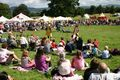 Bodelwyddan Medieval Show - castles photo
