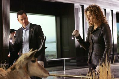 CSI - Scena del crimine NY Stella + Mac