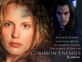 Common Enemies Fanfiction Обои