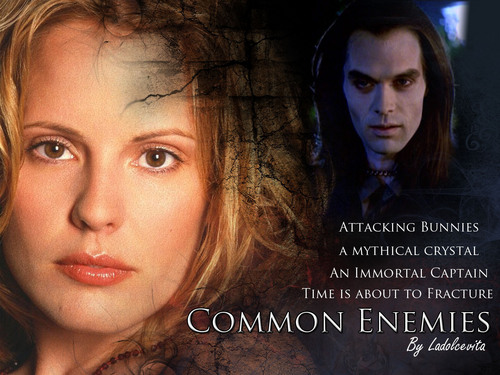 Buffy the Vampire Slayer wallpaper with a portrait called Common Enemies Fanfiction Wallpaper
