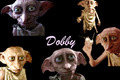 Dobby Wallpaper - dobby-the-house-elf photo