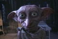 Dobby the House Elf - dobby-the-house-elf photo