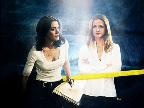 Emily Prentiss 壁纸 possibly containing a sign titled Emily & JJ