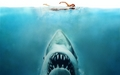 horror-movies - Jaws wallpaper