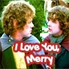 Merry & Pippin - A beautiful friendship