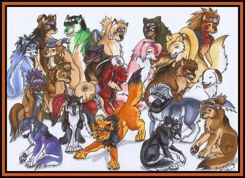 Naruto - Hunde