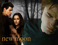New Moon Wallpaper - twilight-series photo