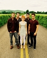 Paramore - New Picture