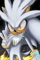 Silver - sonic-shadow-and-silver photo