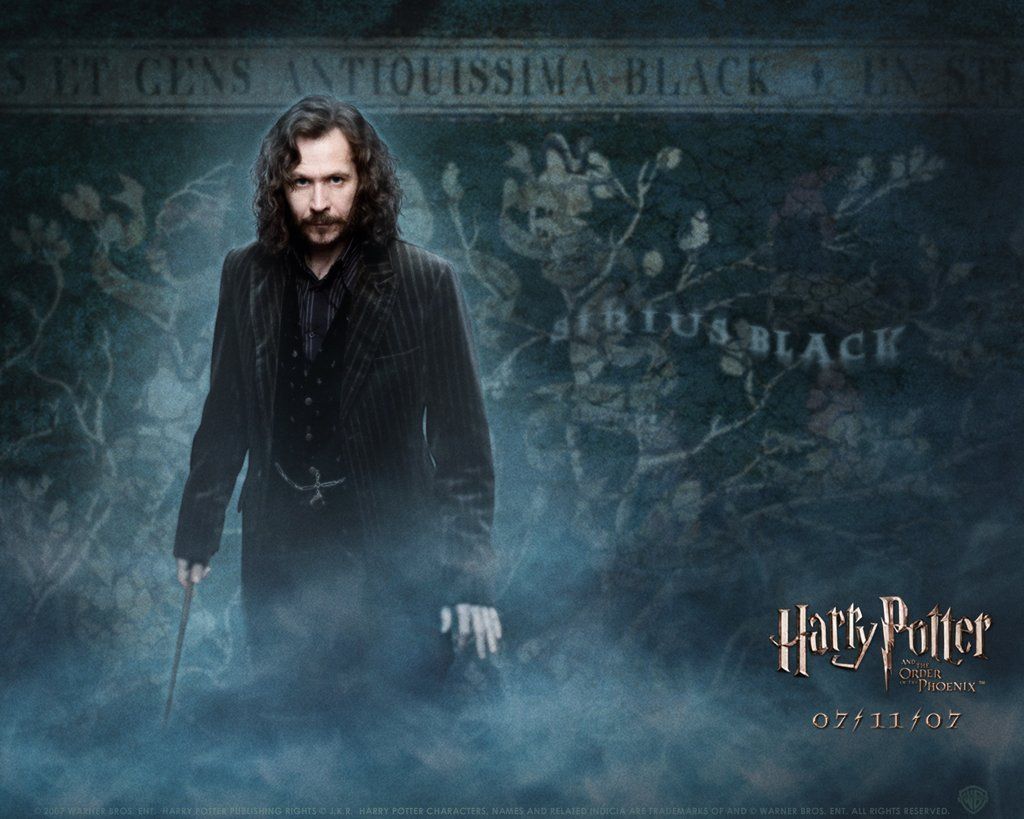 Sirius Black - Sirius Black Photo (7016586) - Fanpop