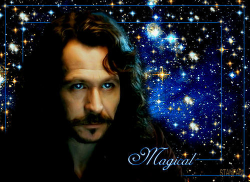 Sirius Black wallpaper probably with a portrait called Sirius Black