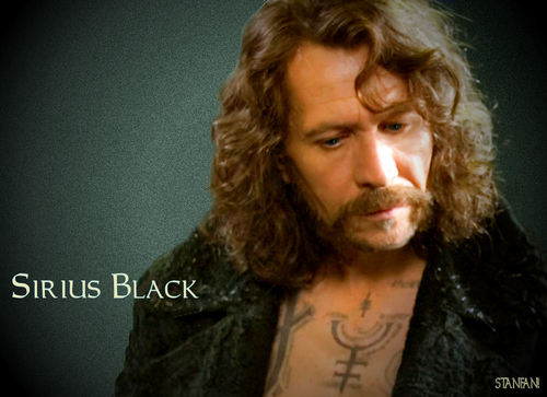 Sirius Black wallpaper probably containing a portrait entitled Sirius Black