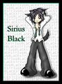 Sirius - sirius-black fan art