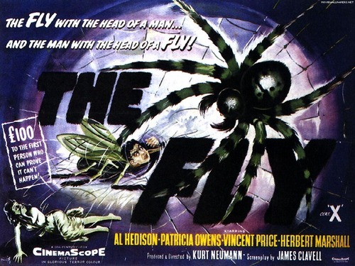 ホラー映画 壁紙 probably containing アニメ called The Fly (1959)
