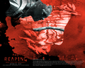 horror-movies - The Reaping wallpaper