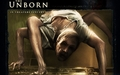 The Unborn - horror-movies wallpaper