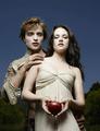 Twilight Thingys - twilight-series photo