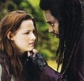 Twilight Thingys - twilight-series photo