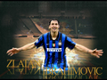 Zlatan - zlatan-ibrahimovic wallpaper
