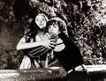 black and white - romeo-and-juliet-1968 photo