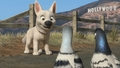 bolt meets hollywood piegons - disneys-bolt wallpaper
