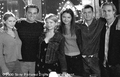 dawsons cast - dawsons-creek photo