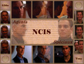 for NCIS fans