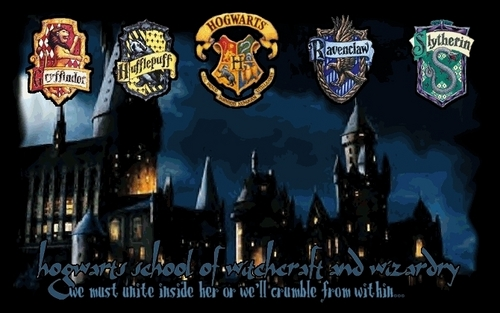 hoggy warty hogwarts! - hogwarts Photo