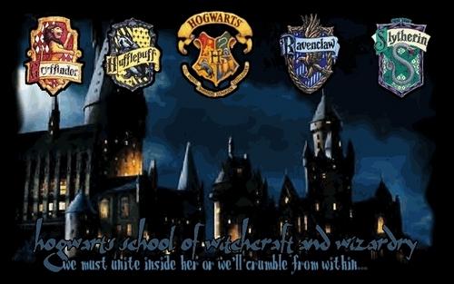 hoggy warty hogwarts!