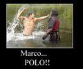 polo? Ahhhh!!!!