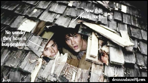sam and dean funny