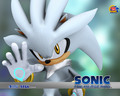 sonic-shadow-and-silver - silver wallpaper