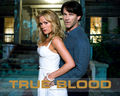 true bood - sookie-stackhouse-series wallpaper