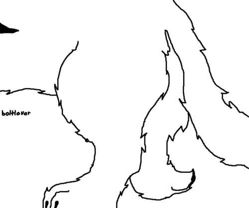 Bolt's hind legs.jpg