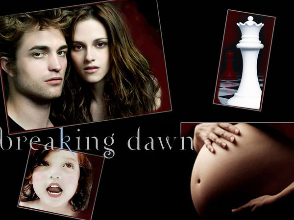 http://images2.fanpop.com/images/photos/7100000/Breaking-Dawn-breaking-dawn-7147745-600-450.jpg