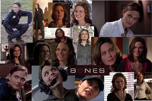 Booth and Bones wallpaper entitled Brennan and Booth<3
