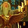 Petición de los Personajes Cannon - Página 2 Dumbledore-harry-potter-7159922-100-100