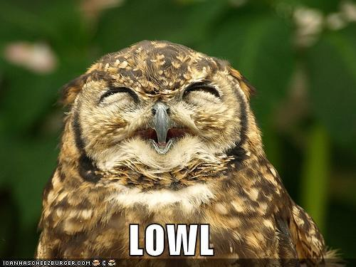 Everyone is fond of OWLS!