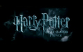 Harry Potter and the Half Blood Prince - evanna-lynch wallpaper