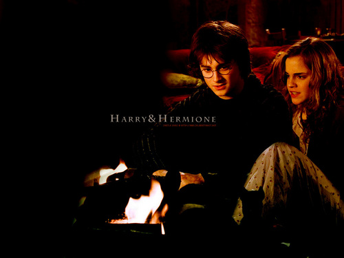 Hermione and Harry
