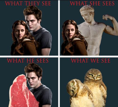 How Twilight is Seen door Everyone