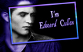 edward-cullen - I'm Edward Cullen, Nice to meet u too. =) wallpaper