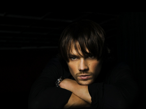 Jared Padalecki images Jared Padalecki HD wallpaper and background photos