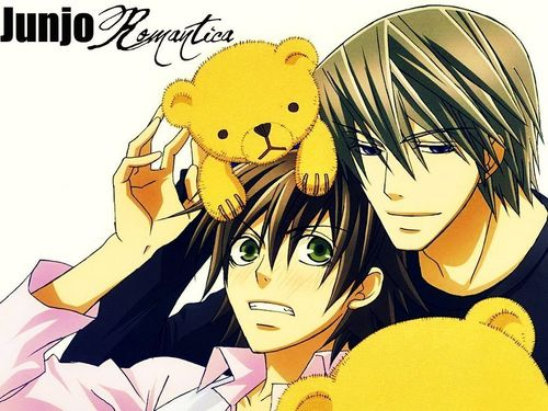 junjou romantica wallpaper with anime titled Junjou Romantica