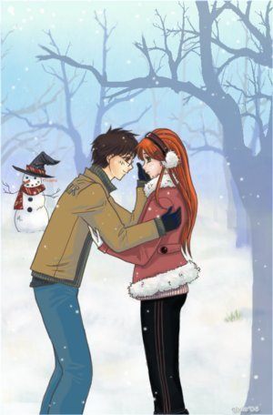 Lily and James - lily-and-james-potter fan art