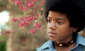 Little Michael - michael-jackson photo