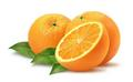 Oranges - fruit photo